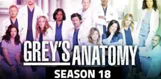Grey's Anatomy Season 18 Poster