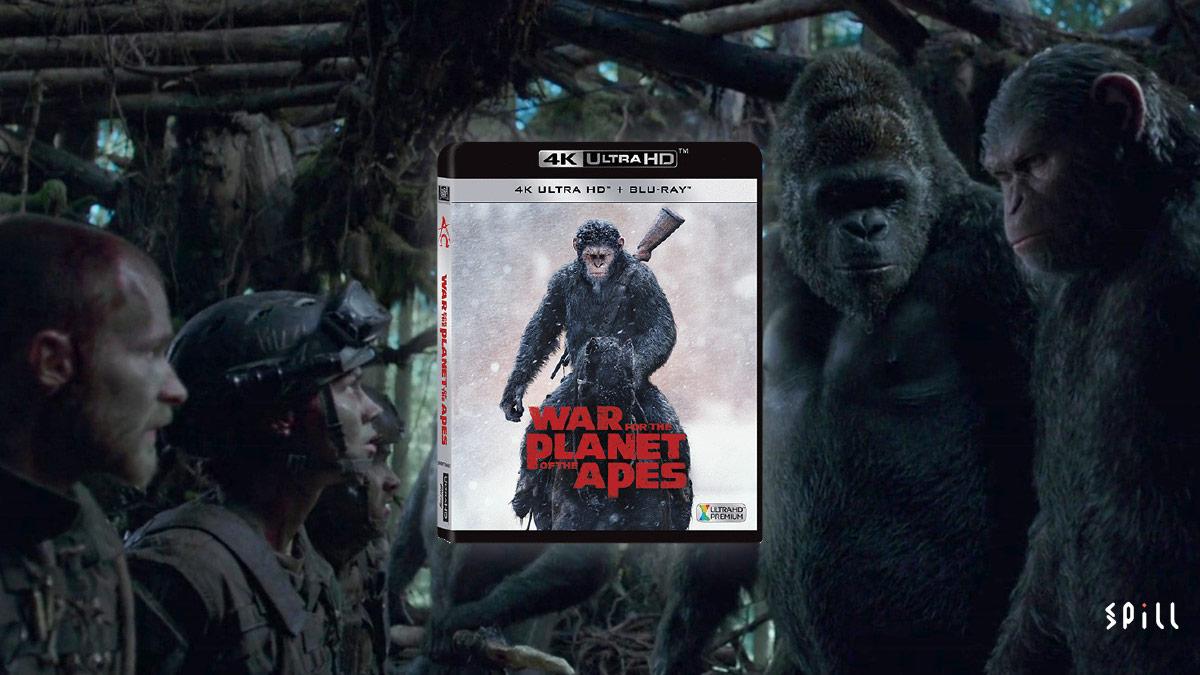 【UHD Blu-ray 新碟速遞】《猿人爭霸戰:猩兇巨戰》:保持到口碑同質素 | SPILL