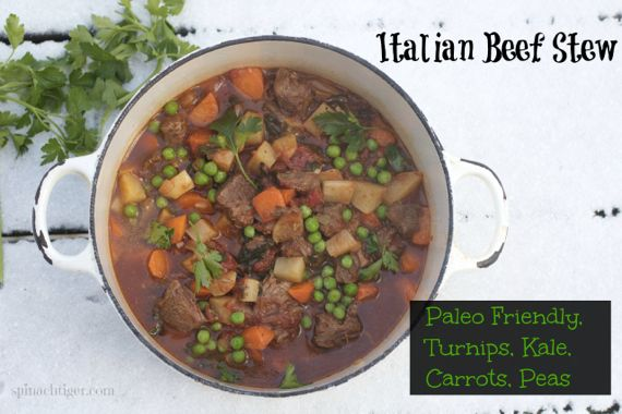 Italian Beef Stew for National Kale Day by Spinach Tiger