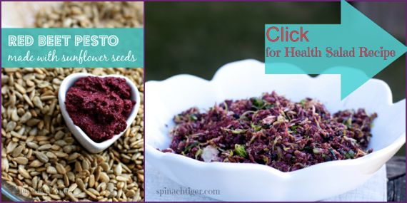 Red Beet Pesto with Brussels Sprouts Salad by Spinach TIger