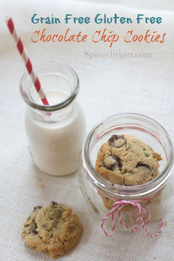 Gluten Free Grain Free Chocolate Chip Cookie by Angela Roberts