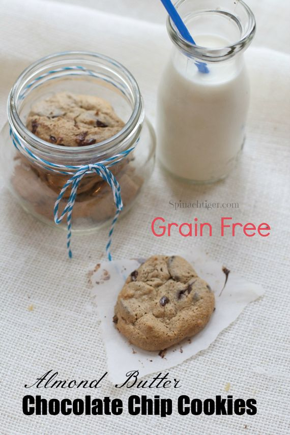 Two Recipes for Grain Free Chocolate Chip Cookie
