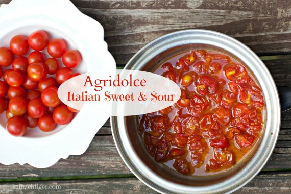 Agridolce, Italian Sweet & Sour Sauce by Angela Roberts