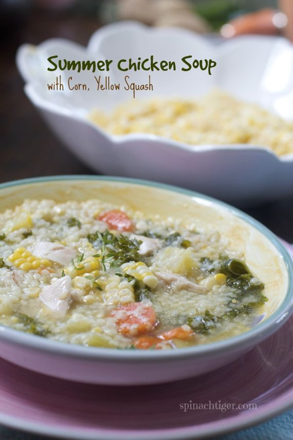 Summer Chicken Soup 2 by Angela Roberts