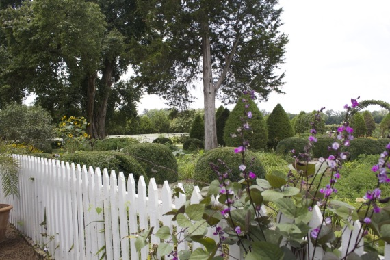Cemetery at Carnton Plantation by Angela Roberts