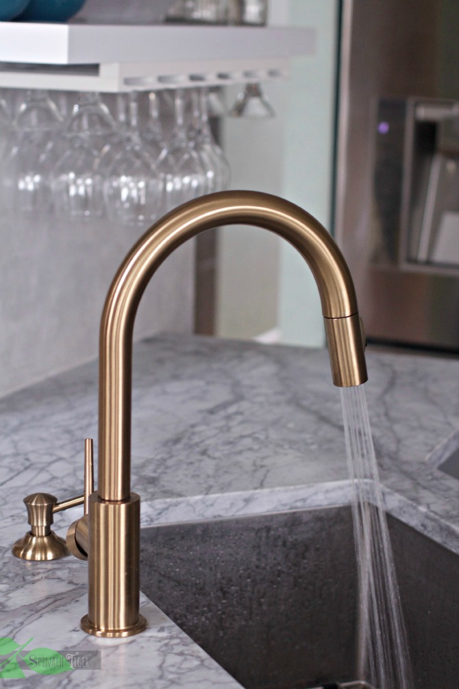 Delta Gold Kitchen Faucet Spray