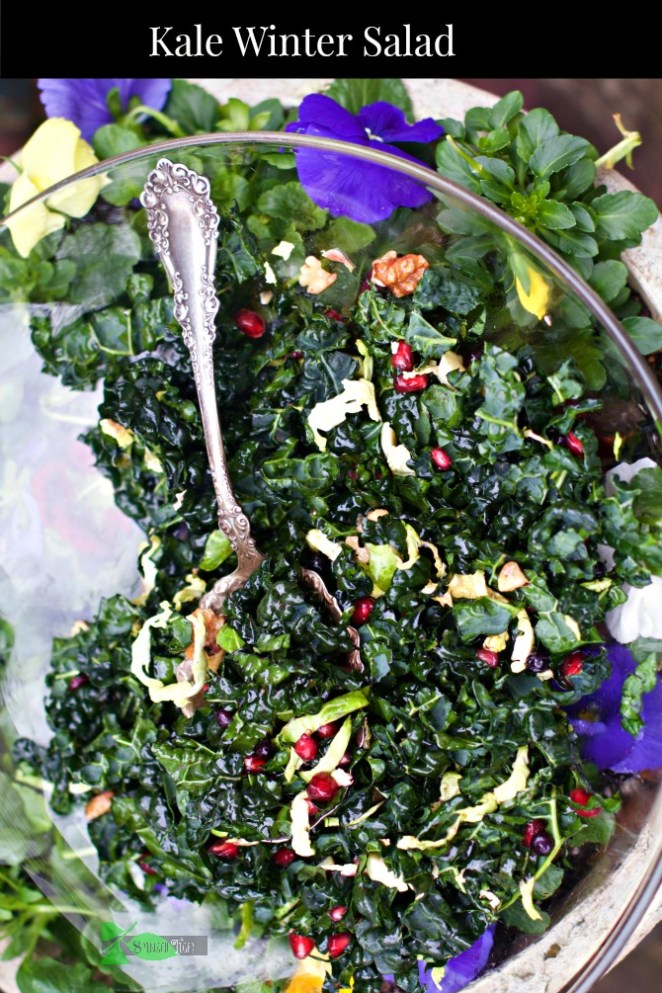 Kale Winter Salad for National Kale Day from Spinach Tiger