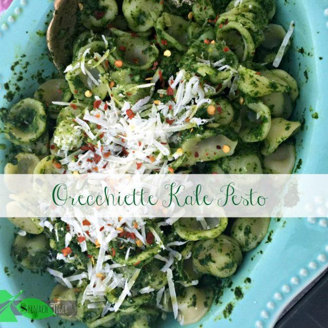 Kale Pesto Recipe by Spinach TIger