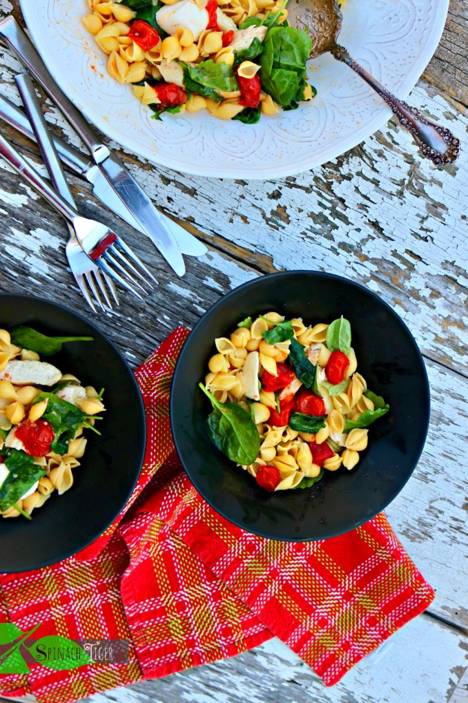 Chicken Pasta Shells, Gluten free with Roasted Tomatoes, Spinach from Spinach Tiger