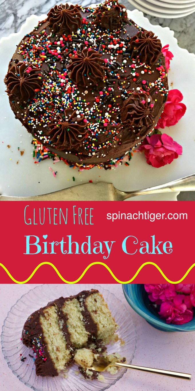 Gluten Free Yellow Cake Birthday Cake with Chocolate Frosting from Spinach TIger