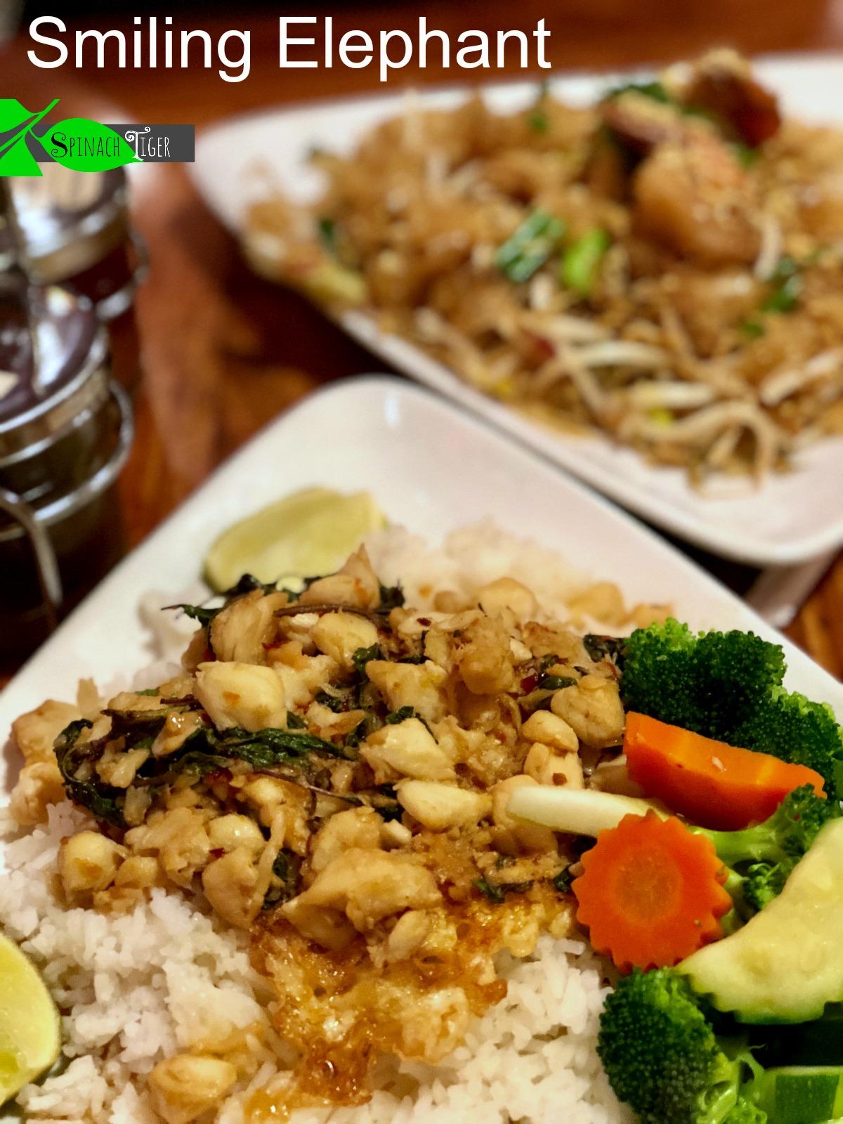 Nashville Restaurants: Smiling Elephant, Our Favorite Thai