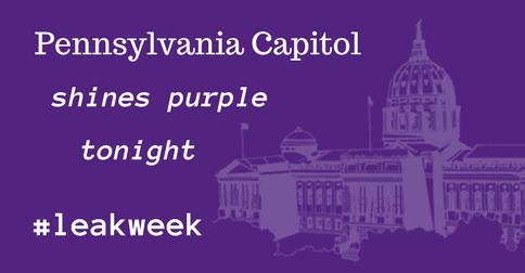 PA Capitol lights