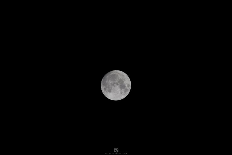 Moon-SPINA²