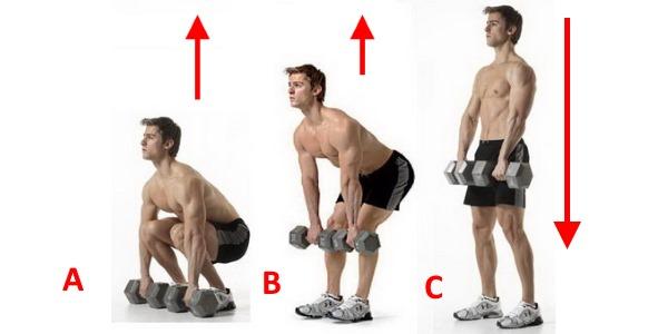 Latihan ini merujuk kepada asas untuk mengkaji ketebalan otot belakang