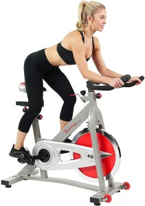 Sunny Health & Fitness Indoor Cycle Exercise Bike