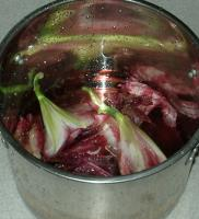 amaryllis flowers into the pot