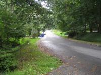 Honeybee Lane