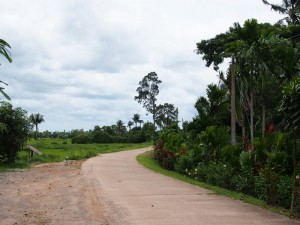 At the edge of Na Jok village