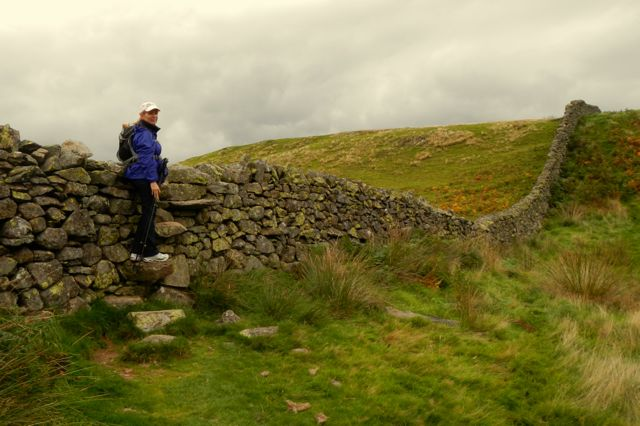 A stile built into the wall: stones create steps going up one side and down the other.