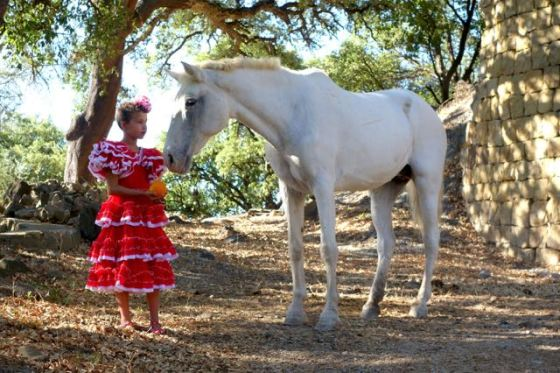 We were enjoying ourselves so much, we forgot to take a photo of Mouche and Christian, but here is a photo of Mouche's niece in Andalucían dress with Pela, the free-range horse.