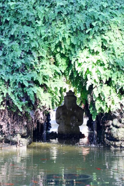 a fountain commandeered by ferns