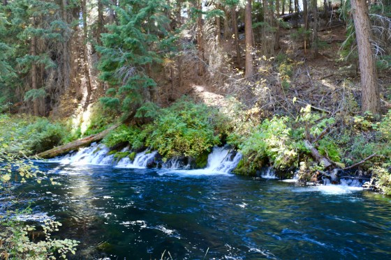 Sugar Springs on the Metolius River
