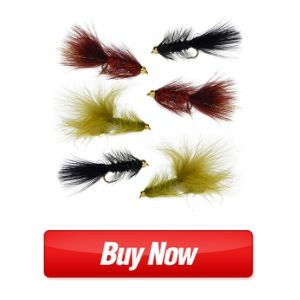 Woolly Bugger Trout Fly Fishing Streamer Assortment