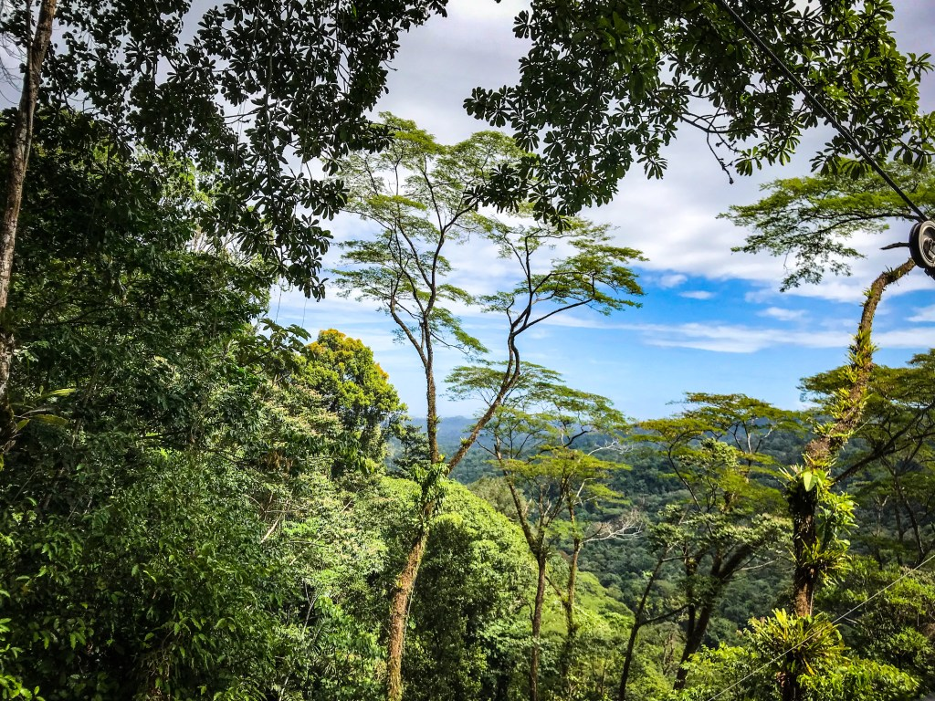 A Day at the Wheelchair Accessible Veragua Rainforest Eco-Adventure Park in Limón, Costa Rica