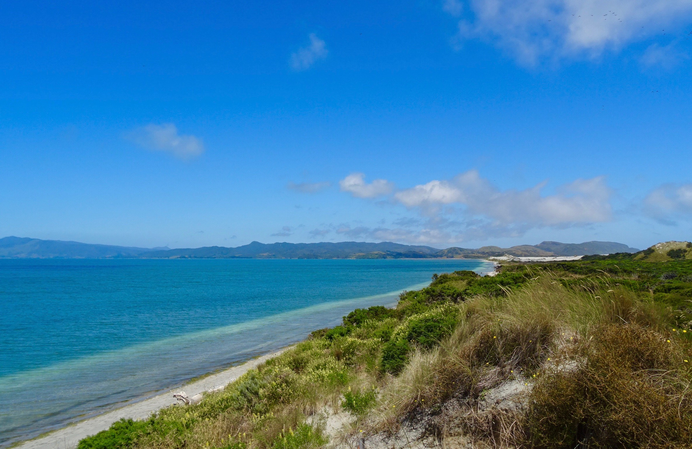 Farewell Spit, New Zealand