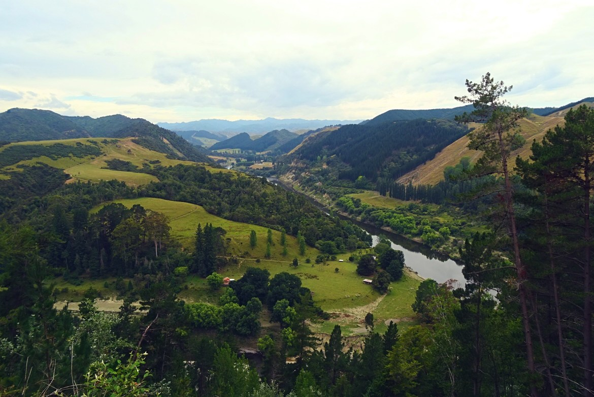 Whanganui River, New Zealand
