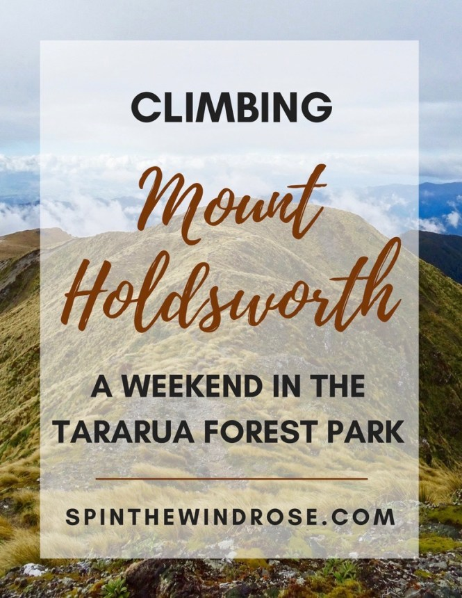 climbing mount holdsworth, tararua forest park - spinthewindrose.com