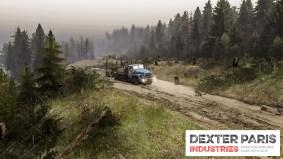dpi_forestry_expert_04