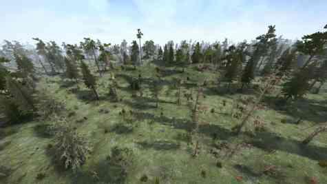 Forest-map-v041119-3