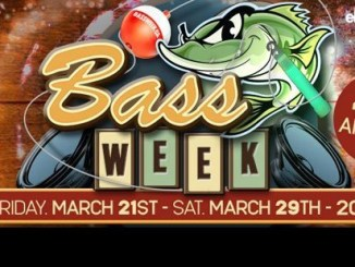 The Bass Week Teaser