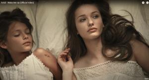 Screenshot: Avicii - Wake Me Up (Official Video)
