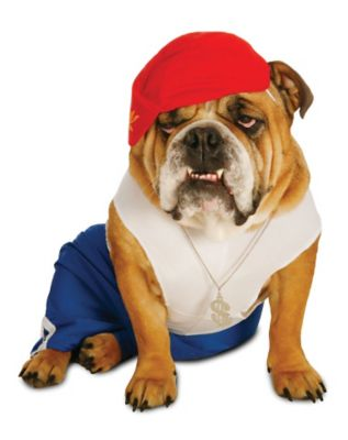 Pop Star Costumes For Dogs Rock Star Pet Costumes