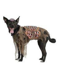 Zombie Dog Costume - Spirithalloween.com