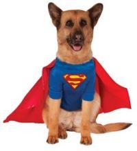 Dog & Cat Costumes | Pet Halloween Costumes ...