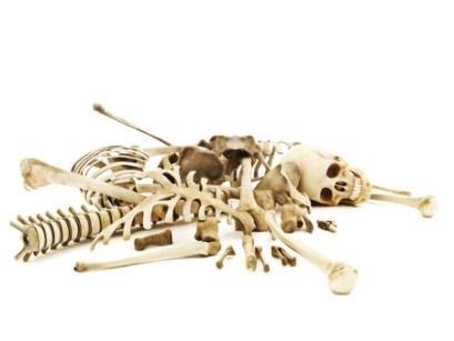 Pile of dry bones