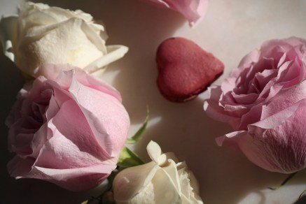 Valentines roses and macarons