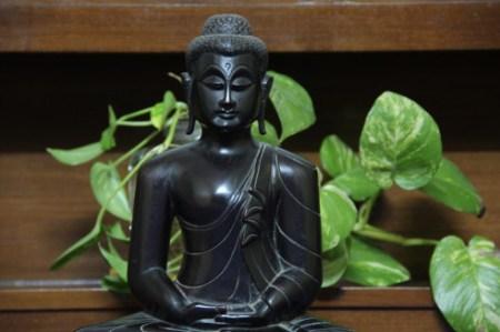 buddha-0352