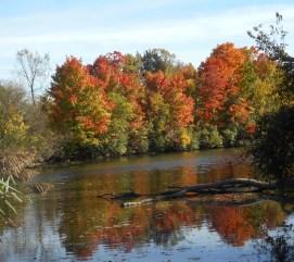 Newburgh Lake, Michigan