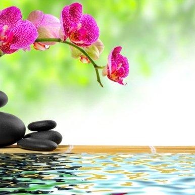349078__zen-stones-and-bamboo_p