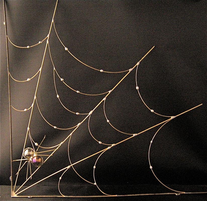 Corner Spider Web by Chris Montgomery