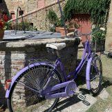 Vintage Bicycle_Spirito Toscano 7