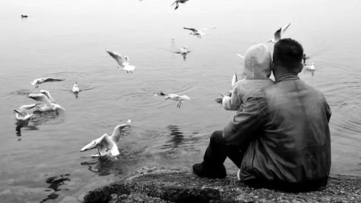 親子 父親 子供 海辺 会話 カモメ
