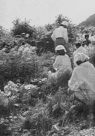 祈祷活動をするユタ(1955年頃)