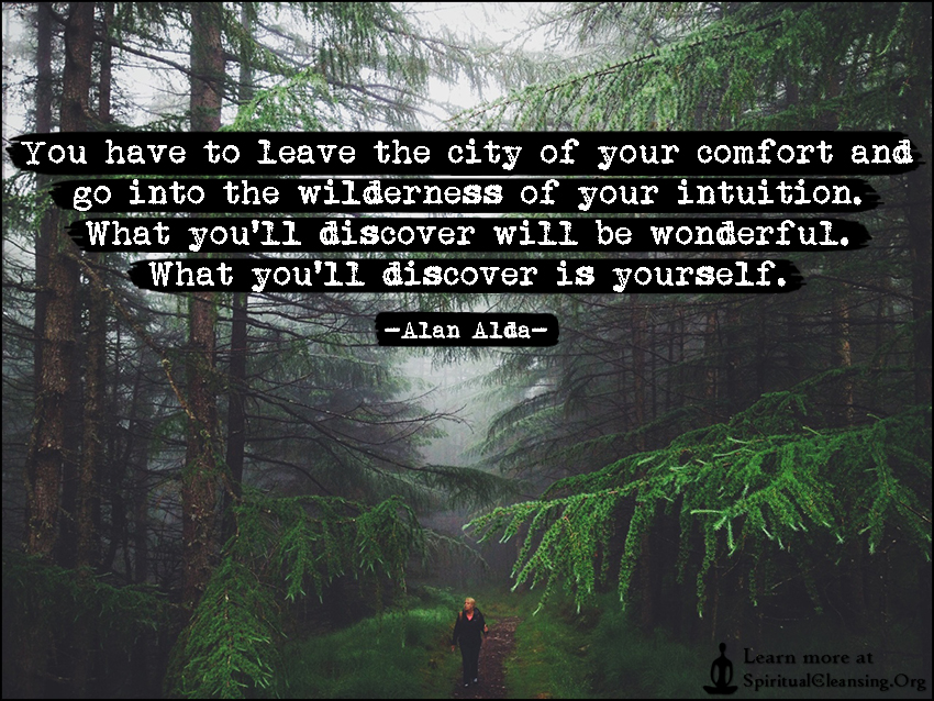 Image result for comfort zone wilderness