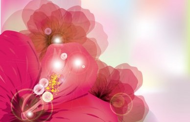 How Reiki Can Heal Damaged Relationships