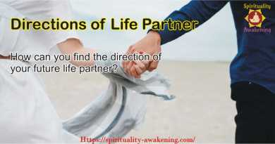 Directions of Life Partner